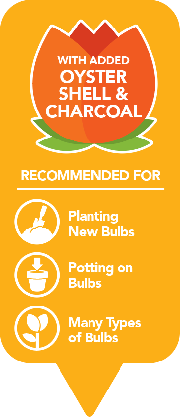 bulb-compost-features